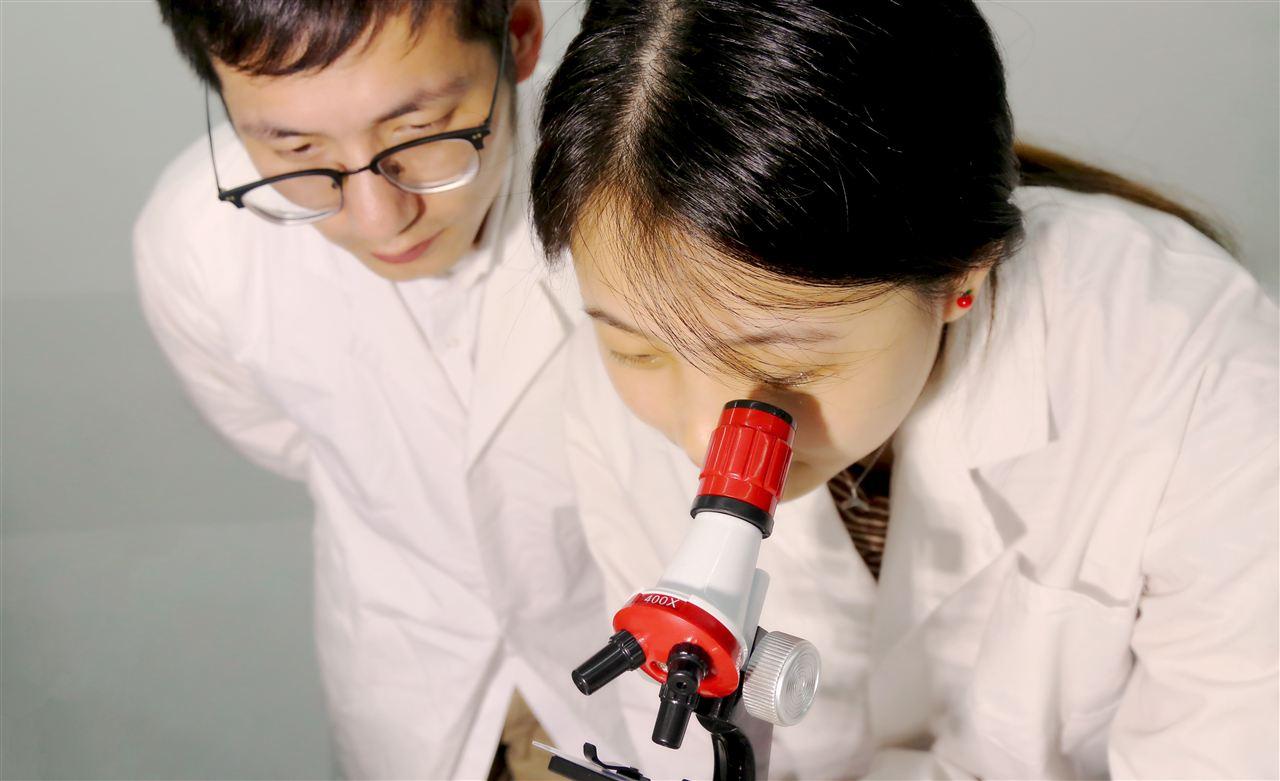 东莞科学技术博物馆860万采购双束扫描电镜