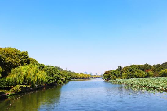 保护沼泽湿地 科学仪器来体检湿地现状