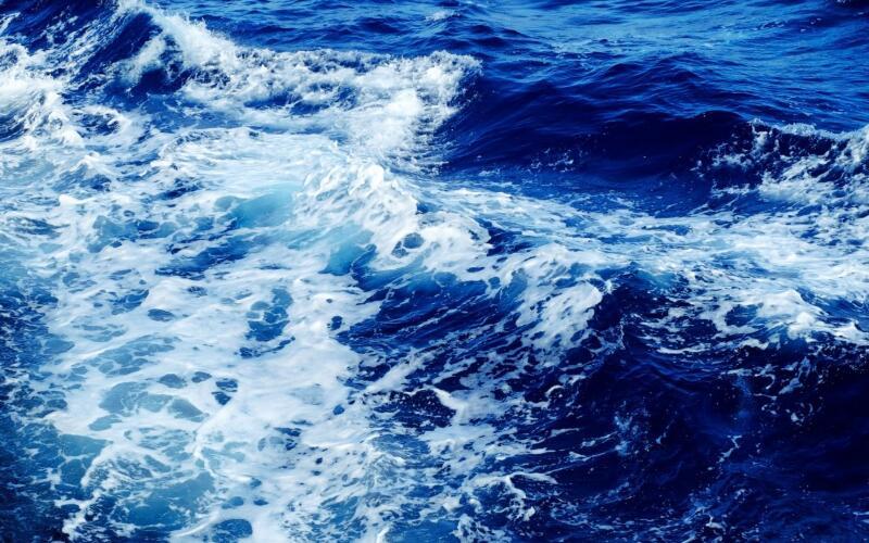 两家中标湛江市环境监测站海水水质监测项目